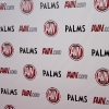 avn-awards_3294