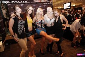 2013 AVN Fan Fest