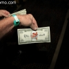 casino-carnaval_4520