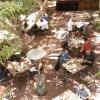 buffet-lunch_2848